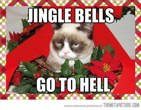 Jingle Bells Cats And Dogs