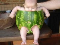 Redneck baby chair photo