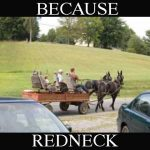 Because Redneck Tour Wagon