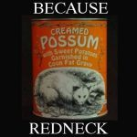 Creamed Possum Because Redneck
