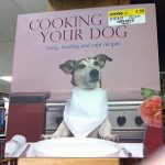 Sticker Fails Cooking Your Dog