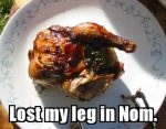 Lost It In Nom Thanksgiving Picture