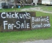 Only In Kentucky