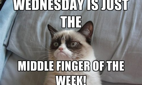 Wednesday Is Just