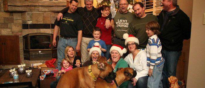 Christmas Photobomb Dogs