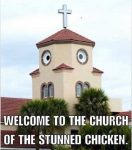 Church Of The Stunned Chicken funny image