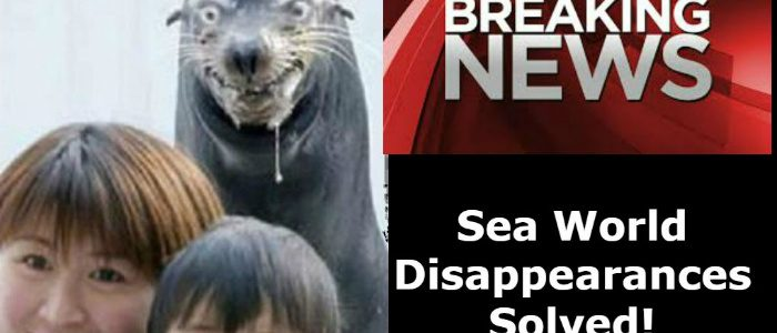 Sea World Disappearances Solved!
