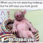 No Makeup animal image