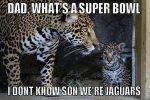 Super Bowl Jaguars