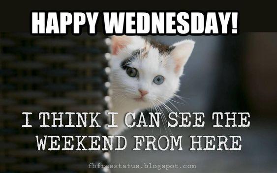 I See Wednesday