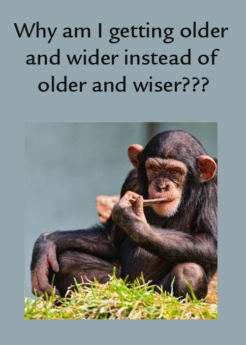 Older Wider Older Wiser