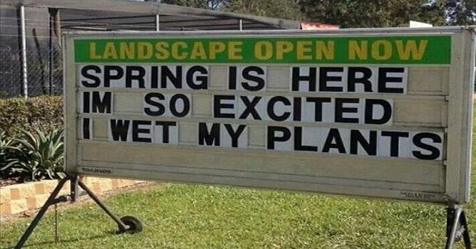 Wet My Plants
