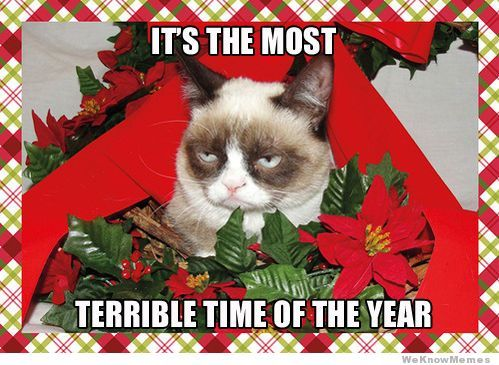 Grumpy Cat Terrible