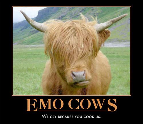Emo Cows image